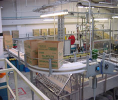 carton conveyer